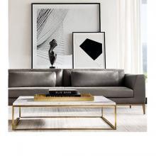 Bàn sofa khung inox - BFI06